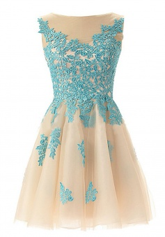 A-line Round Neck Tulle Beaded Short Lace Open Back Champagne Prom Homecoming Dress