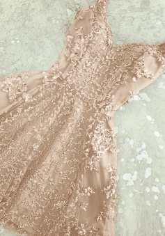 A-Line Spaghetti Straps Short Champagne Tulle Homecoming Dress with Beading