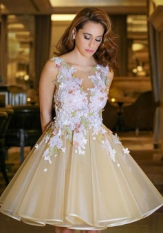 A-Line Scoop Backless Champagne Organza Homecoming Dress with Appliques