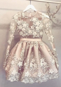 A-Line Jewel Long Sleeves Short Champagne Tulle Homecoming Dress with Appliques