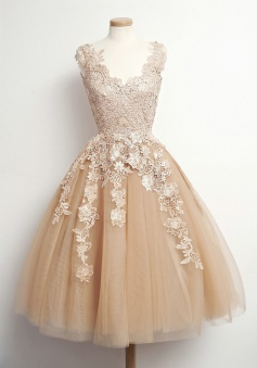 Hot-selling Vintage A-line Short Lace Applique Tulle Homecoming/Party Dress