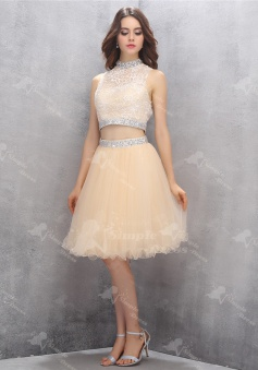 Nectarean Two Piece High Neck Knee-Length Light Champagne Homecoming Dress with Beading Lace Top
