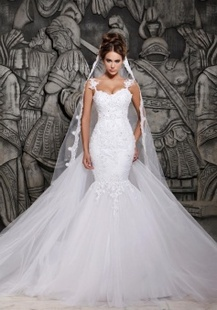 Beauty Tulle Mermaid Lace Wedding Dress with Wedding Veil