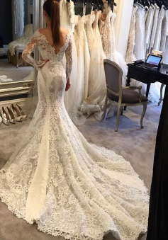 Mermaid Long-Sleeves V-Neck Lace Elegant Wedding Dress