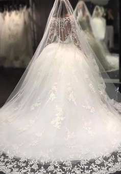 Scoop Crystal Tulle Luxury Appliques Long-Sleeves Wedding Dress BA4480