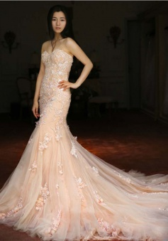 Pink Sweetheart Tulle Lace Long Wedding Dress Popular Sexy Mermaid Court Train Bridal Gowns